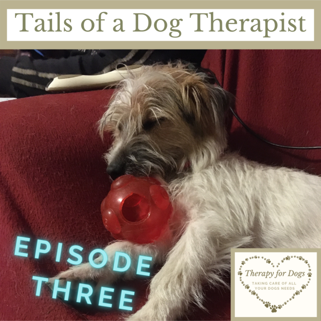 Tails of a Dog Therapist